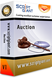 Auction Website