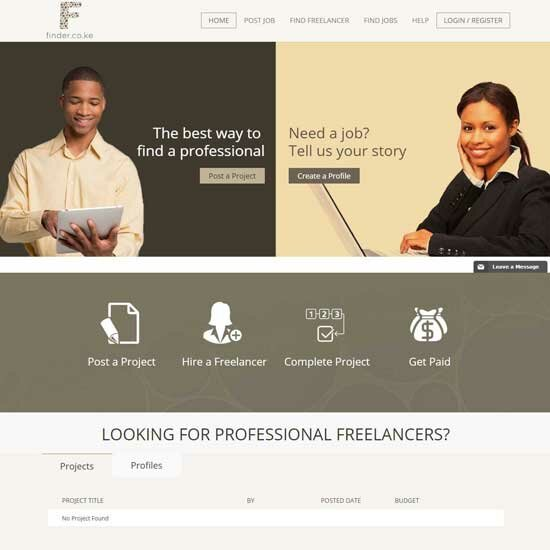 Freelancer Marketplace theme-3